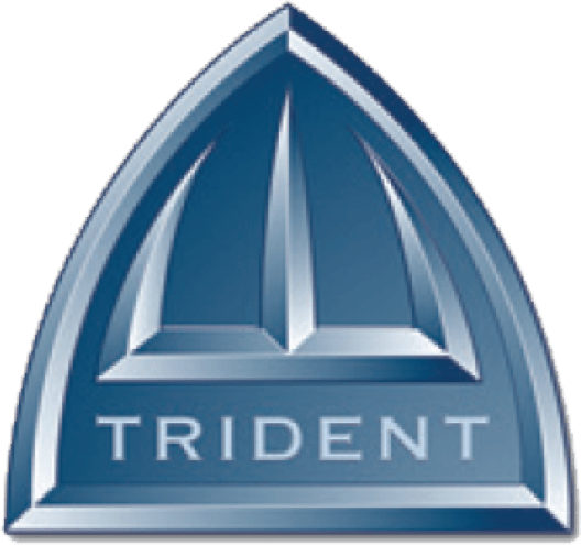 Trident Fire & Security Group